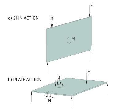 Action de plaque et de peau