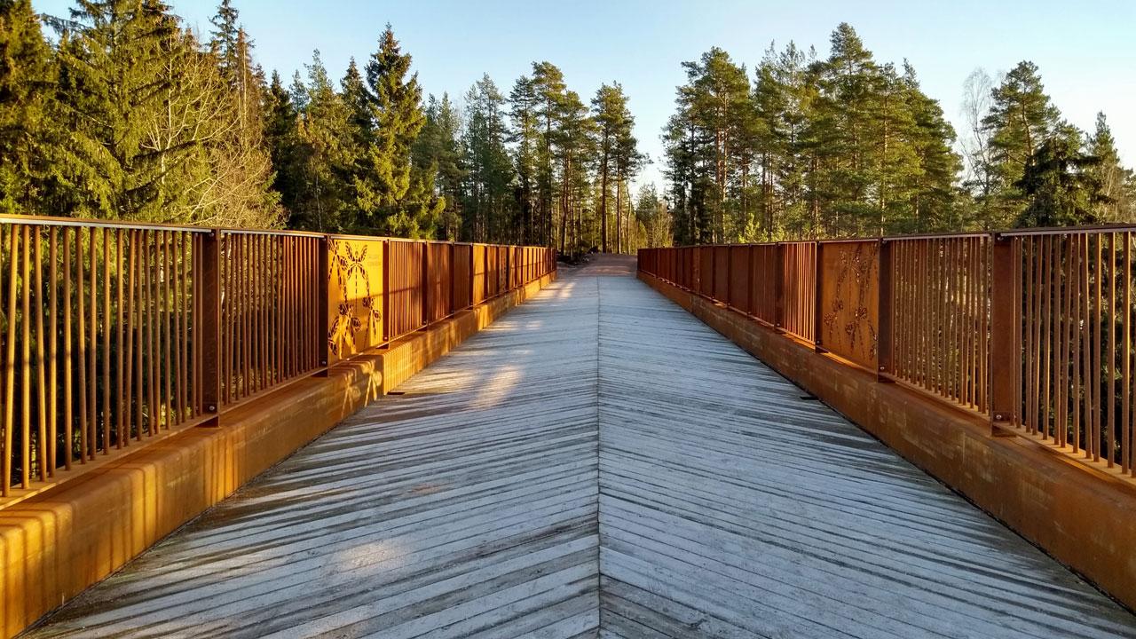 Bir milli parkın ağaç tepelerinden görünen Kuusijärvi köprüsü.